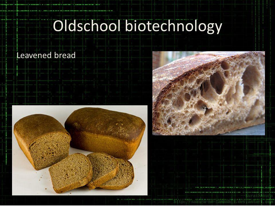 Oldschool biotechnology Leavened bread