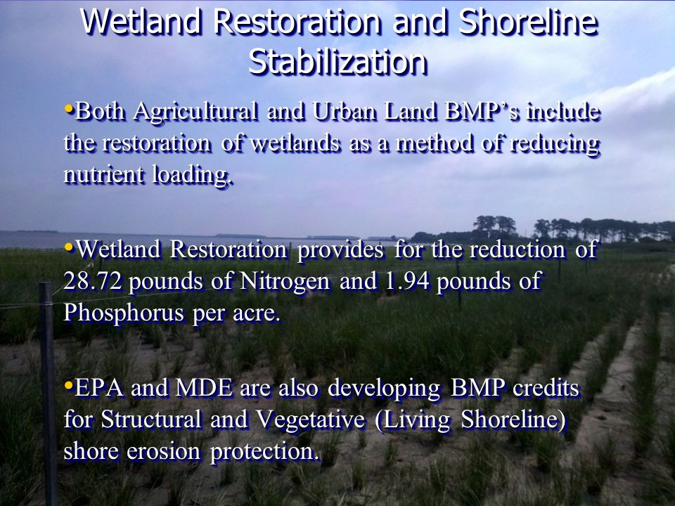 Both Agricultural and Urban Land BMPs include the restoration of wetlands as a method of reducing nutrient loading.