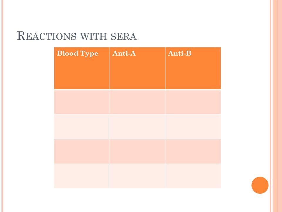 R EACTIONS WITH SERA Blood TypeAnti-AAnti-B