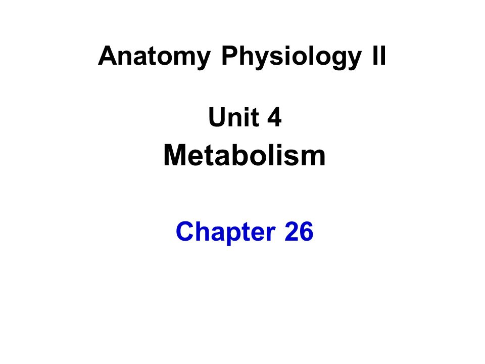 Anatomy Physiology II Unit 4 Metabolism Chapter 26
