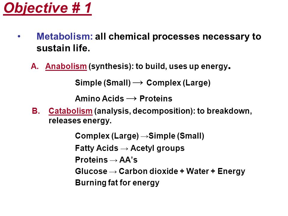 Objective # 1 Metabolism: all chemical processes necessary to sustain life. A. Anabolism (synthesis): to build, uses up energy. Simple (Small) Complex