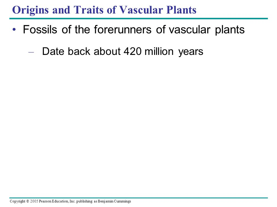 Copyright © 2005 Pearson Education, Inc. publishing as Benjamin Cummings Origins and Traits of Vascular Plants Fossils of the forerunners of vascular