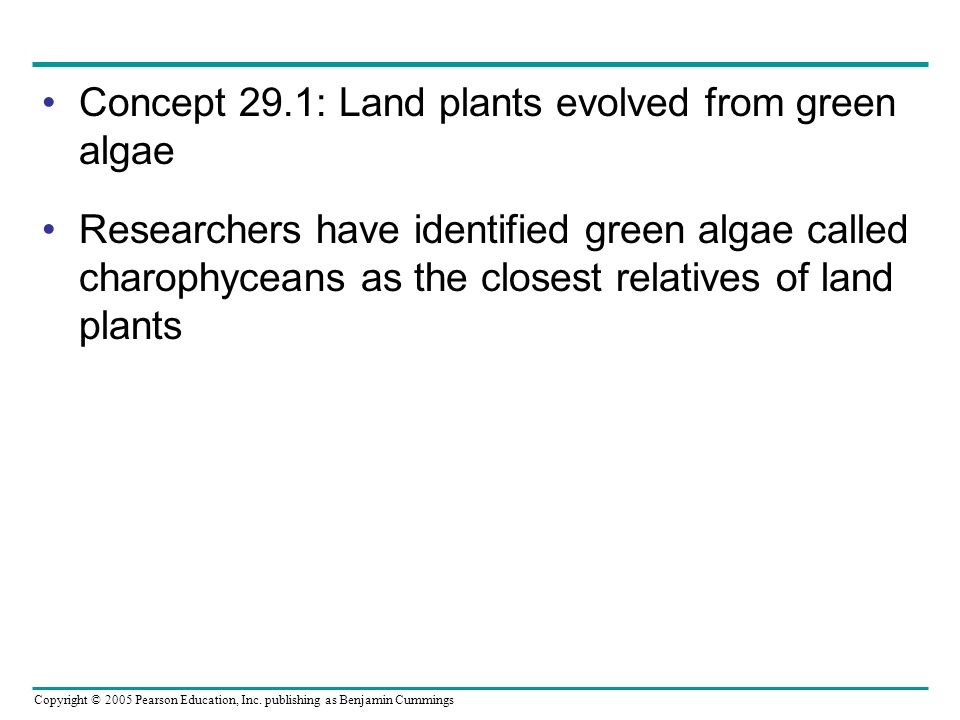 Copyright © 2005 Pearson Education, Inc. publishing as Benjamin Cummings Concept 29.1: Land plants evolved from green algae Researchers have identifie
