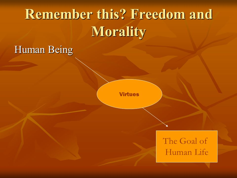 Remember this Freedom and Morality Human Being The Goal of Human Life Virtues