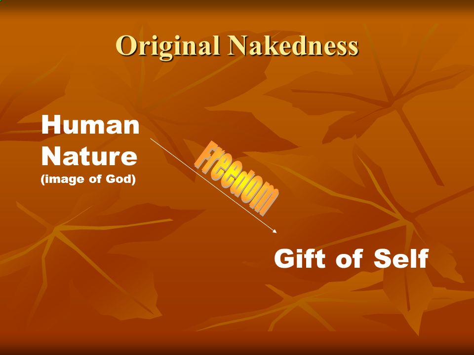 Original Nakedness Human Nature (image of God) Gift of Self