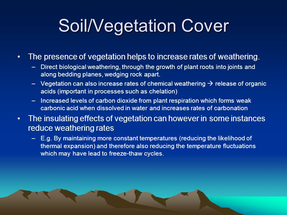 Soil/Vegetation Cover The presence of vegetation helps to increase rates of weathering. –Direct biological weathering, through the growth of plant roo