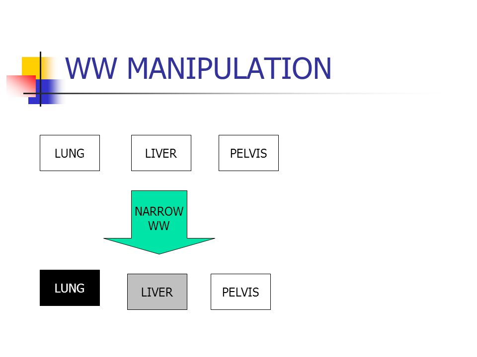 WW MANIPULATION LUNGLIVERPELVIS NARROW WW LUNG LIVERPELVIS
