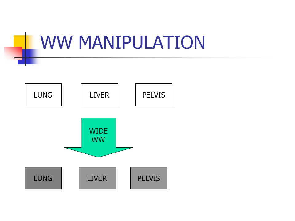 WW MANIPULATION LUNGLIVERPELVIS WIDE WW LUNGLIVERPELVIS