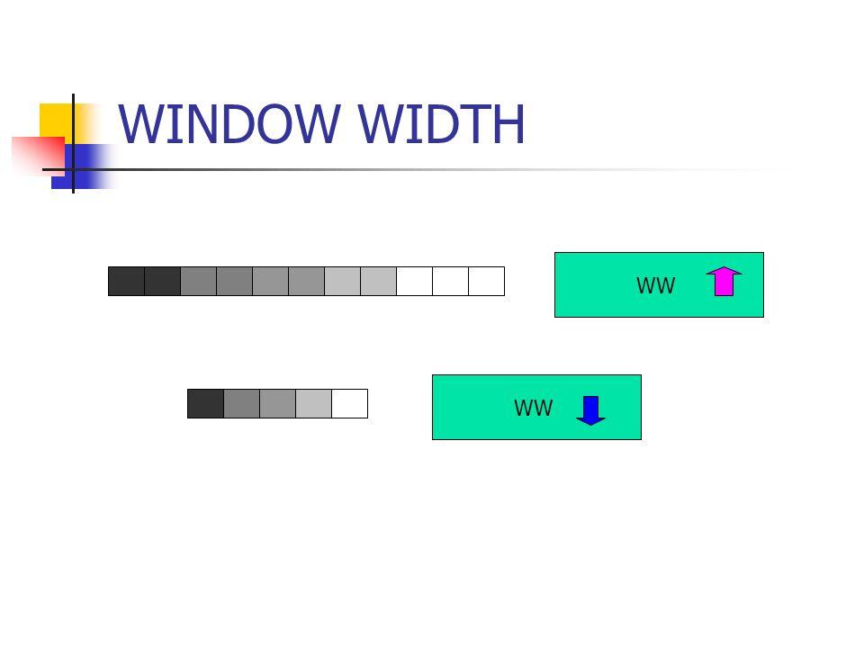 WINDOW WIDTH WW