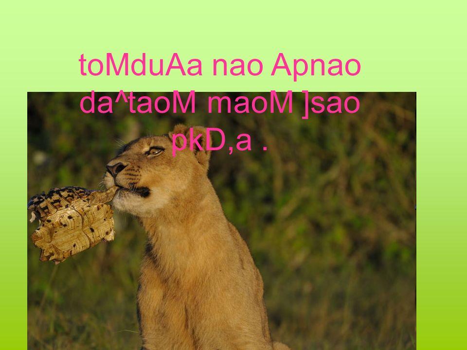 toMduAa nao Apnao da^taoM maoM ]sao pkD,a.