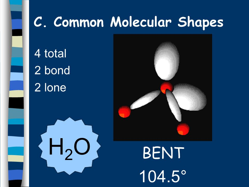 4 total 2 bond 2 lone BENT 104.5° H2OH2O C. Common Molecular Shapes