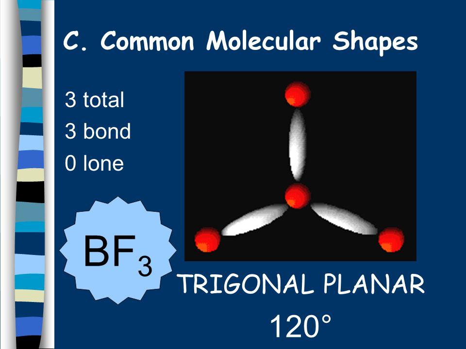 3 total 3 bond 0 lone TRIGONAL PLANAR 120° BF 3 C. Common Molecular Shapes