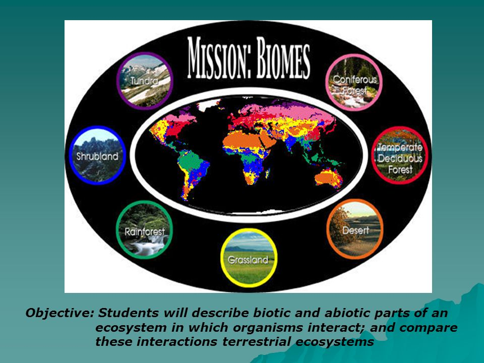 Objective: Students will describe biotic and abiotic parts of an ecosystem in which organisms interact; and compare these interactions terrestrial eco