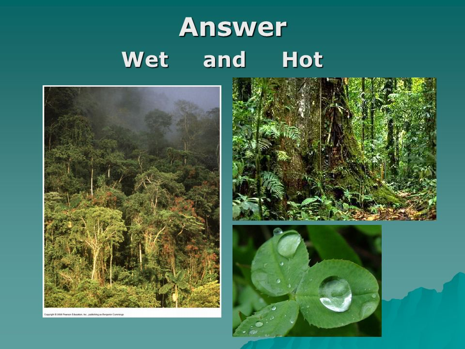 Answer Wet and Hot