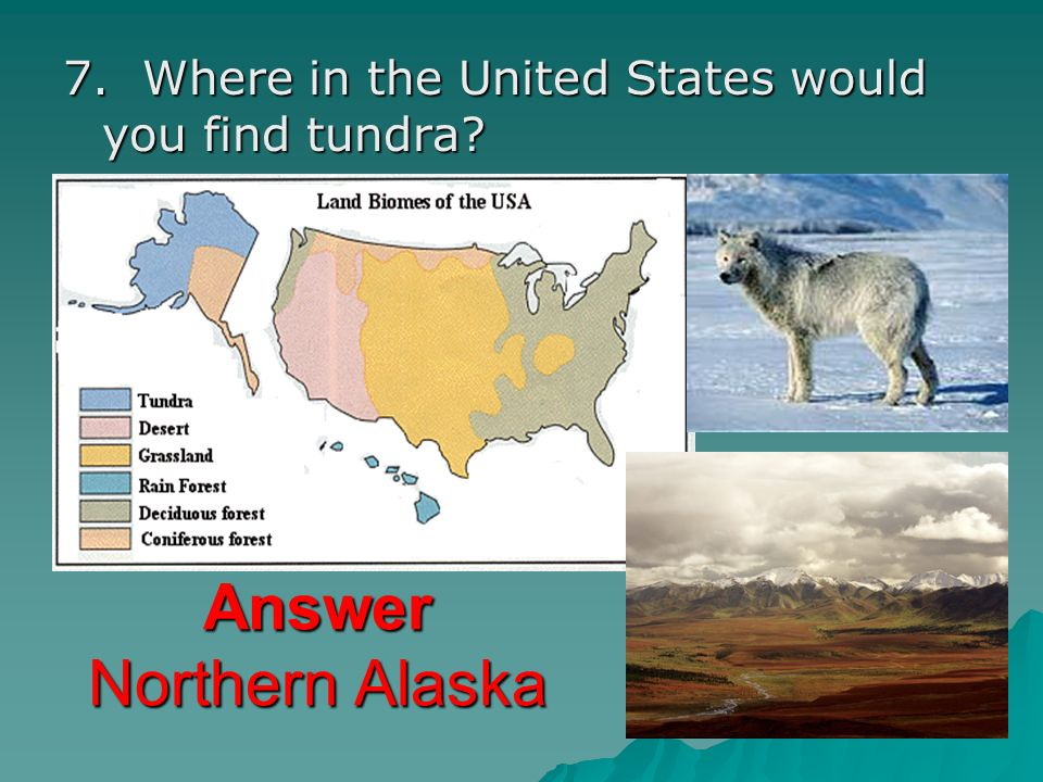 7. Where in the United States would you find tundra? Answer Northern Alaska