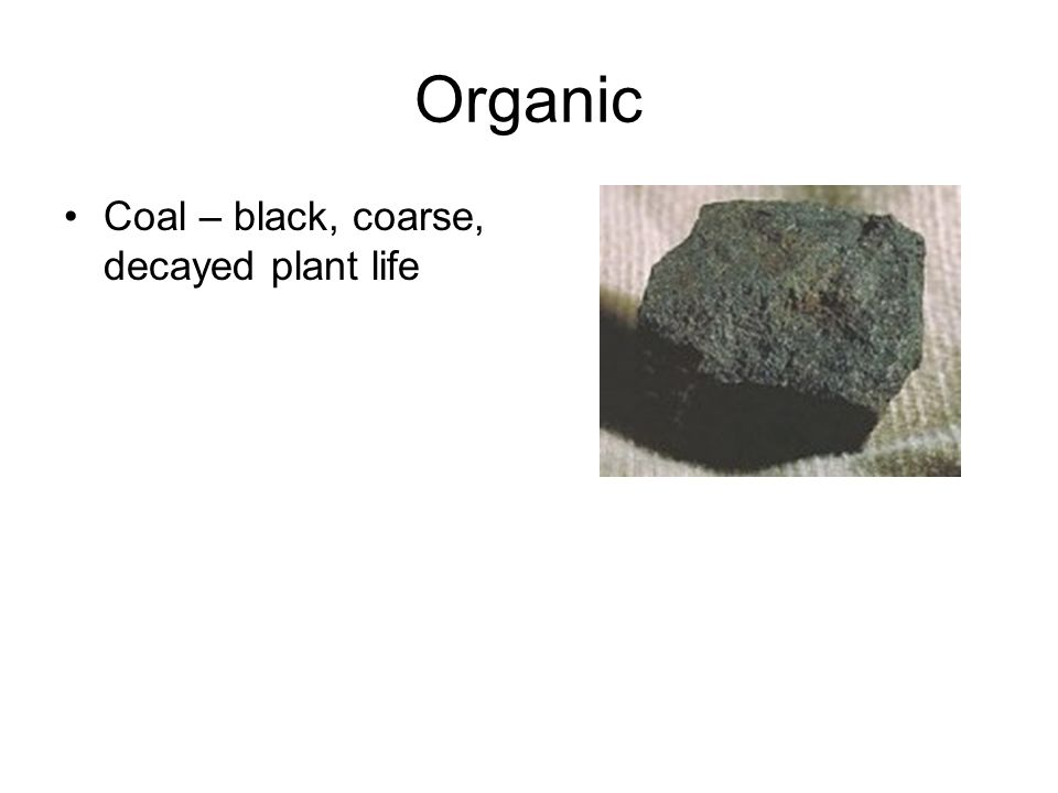 Organic Coal – black, coarse, decayed plant life
