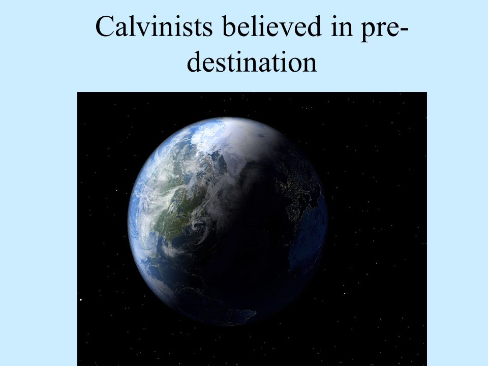Calvinists believed in pre- destination