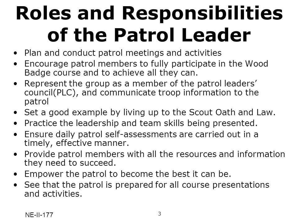 NE-II-177 Roles and Responsibilities of the Patrol Leader Plan and conduct patrol meetings and activities Encourage patrol members to fully participat