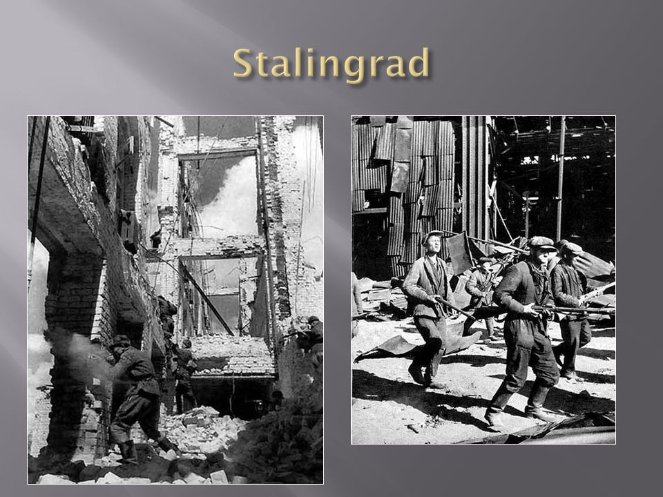 On Aug 24 the Germans attacked Stalingrads suburbs and began fighting their way into the city Hitler began shifting forces from the Caucasus to Stalin