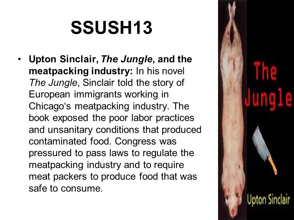 SSUSH13 Upton Sinclair, The Jungle, and the meatpacking industry: In his novel The Jungle, Sinclair told the story of European immigrants working in C