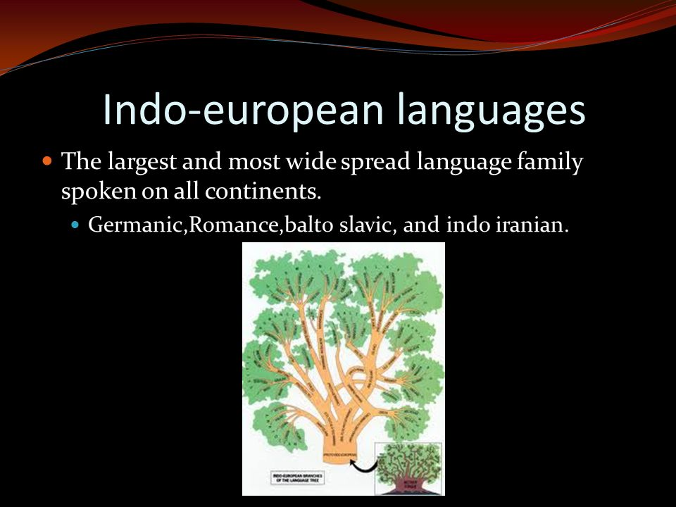 Indo-european languages The largest and most wide spread language family spoken on all continents. Germanic,Romance,balto slavic, and indo iranian.