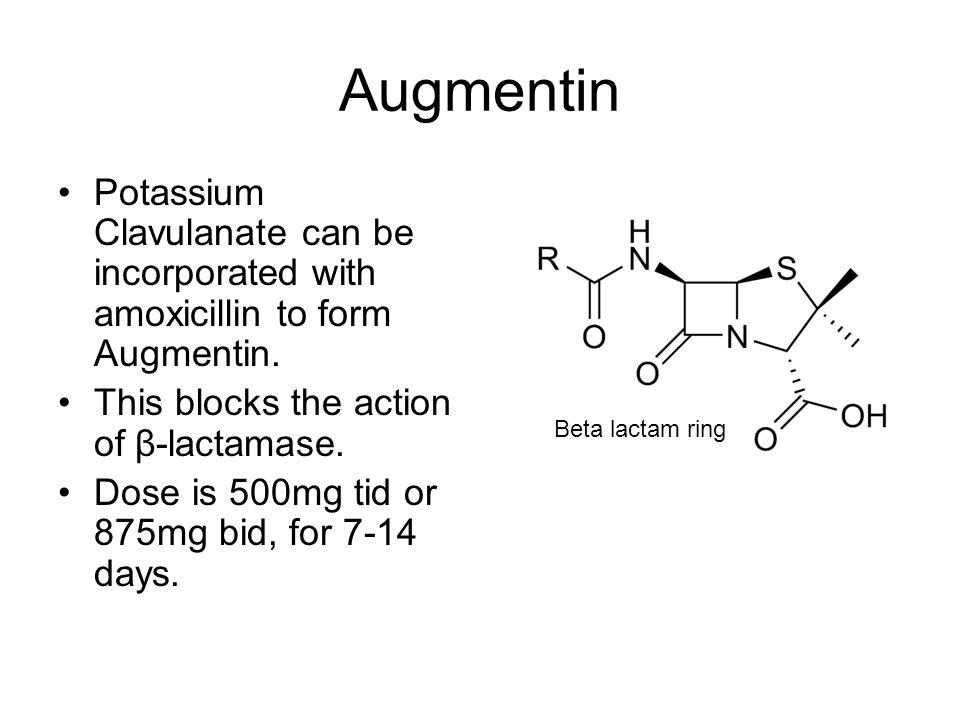 Augmentin Potassium Clavulanate can be incorporated with amoxicillin to form Augmentin. This blocks the action of β-lactamase. Dose is 500mg tid or 87