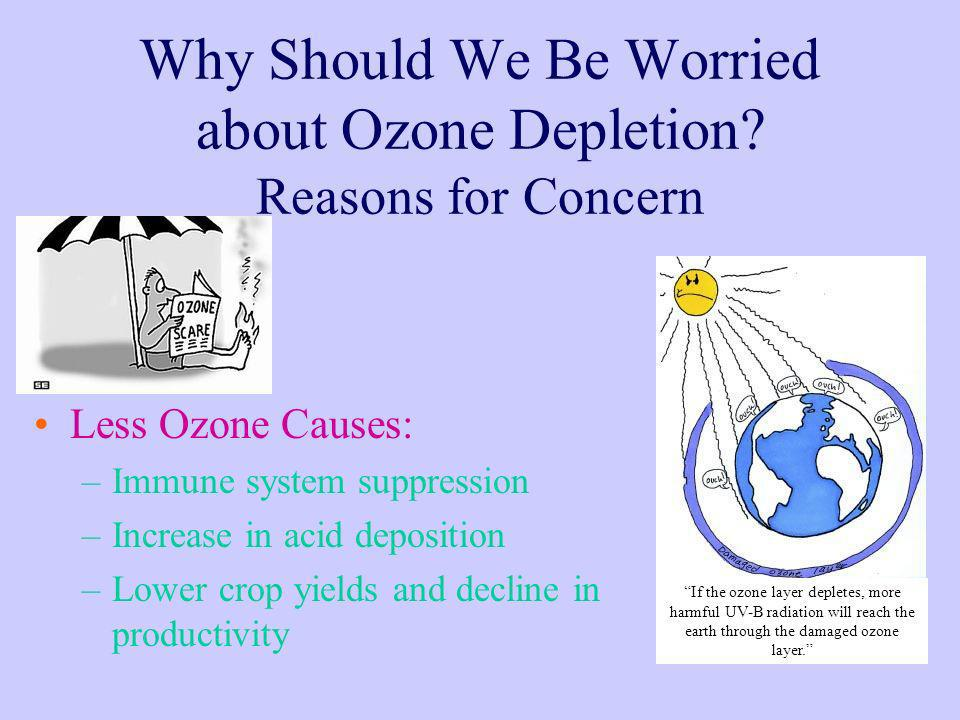 Why Should We Be Worried about Ozone Depletion? Reasons for Concern Less Ozone Causes: –Immune system suppression –Increase in acid deposition –Lower