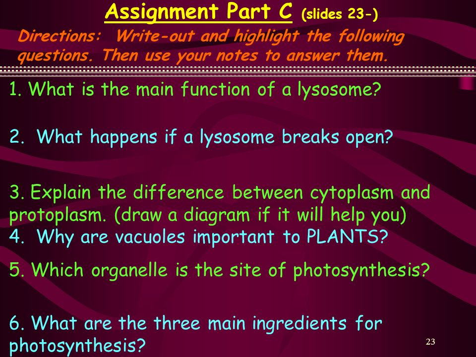 23 Assignment Part C (slides 23-) Directions: Write-out and highlight the following questions. Then use your notes to answer them. 1. What is the main