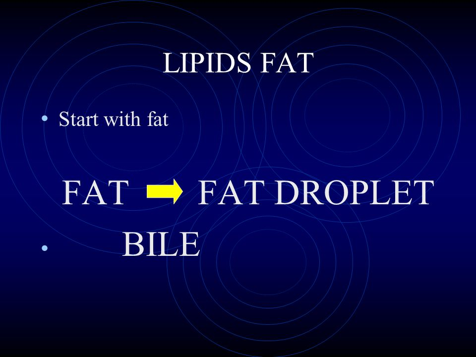 LIPIDS FAT Start with fat FAT FAT DROPLET BILE