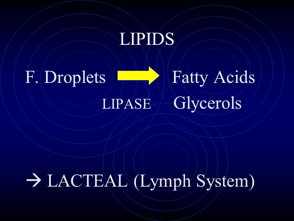 LIPIDS F. Droplets Fatty Acids LIPASE Glycerols LACTEAL (Lymph System)