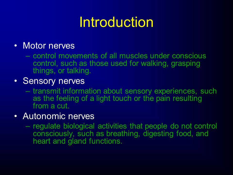 Motor nerves –control movements of all muscles under conscious control, such as those used for walking, grasping things, or talking. Sensory nerves –t