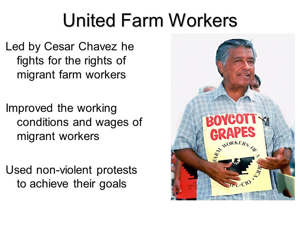 United Farm Workers Led by Cesar Chavez he fights for the rights of migrant farm workers Improved the working conditions and wages of migrant workers