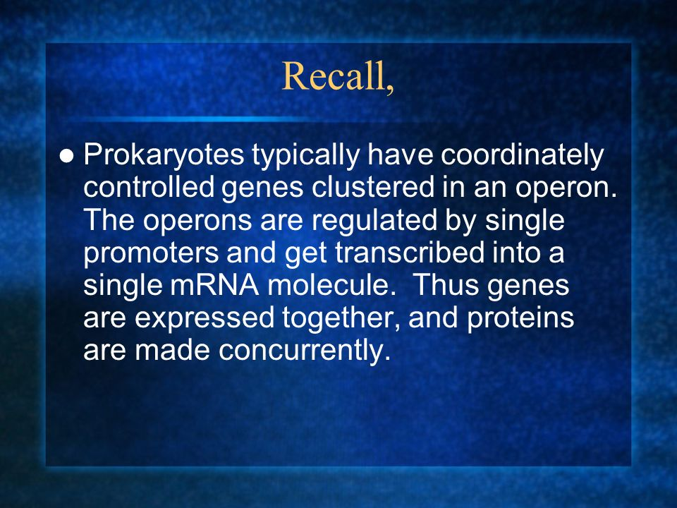 Recall, Prokaryotes typically have coordinately controlled genes clustered in an operon. The operons are regulated by single promoters and get transcr