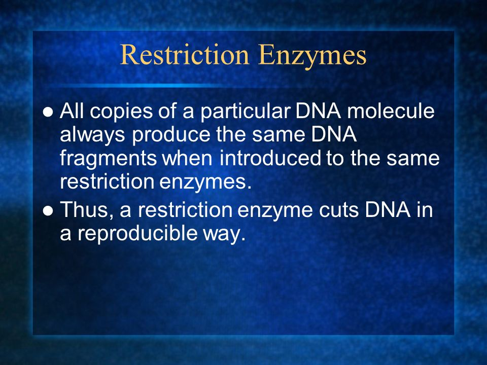 Restriction Enzymes All copies of a particular DNA molecule always produce the same DNA fragments when introduced to the same restriction enzymes. Thu