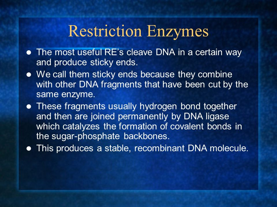 Restriction Enzymes The most useful REs cleave DNA in a certain way and produce sticky ends. We call them sticky ends because they combine with other