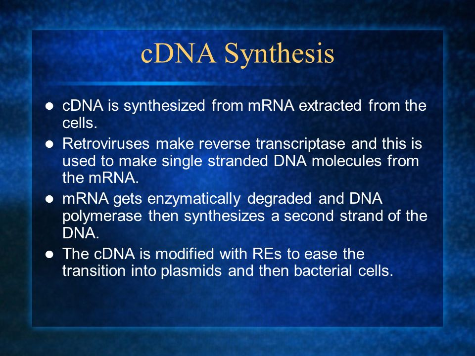 cDNA Synthesis cDNA is synthesized from mRNA extracted from the cells. Retroviruses make reverse transcriptase and this is used to make single strande