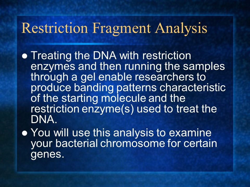 Restriction Fragment Analysis Treating the DNA with restriction enzymes and then running the samples through a gel enable researchers to produce bandi