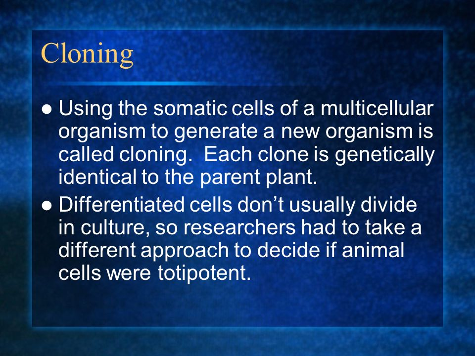 Cloning Using the somatic cells of a multicellular organism to generate a new organism is called cloning. Each clone is genetically identical to the p