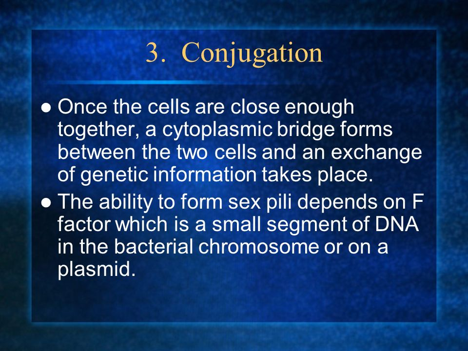 3. Conjugation Once the cells are close enough together, a cytoplasmic bridge forms between the two cells and an exchange of genetic information takes
