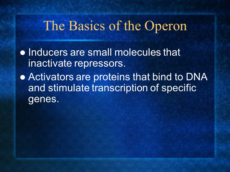 The Basics of the Operon Inducers are small molecules that inactivate repressors. Activators are proteins that bind to DNA and stimulate transcription