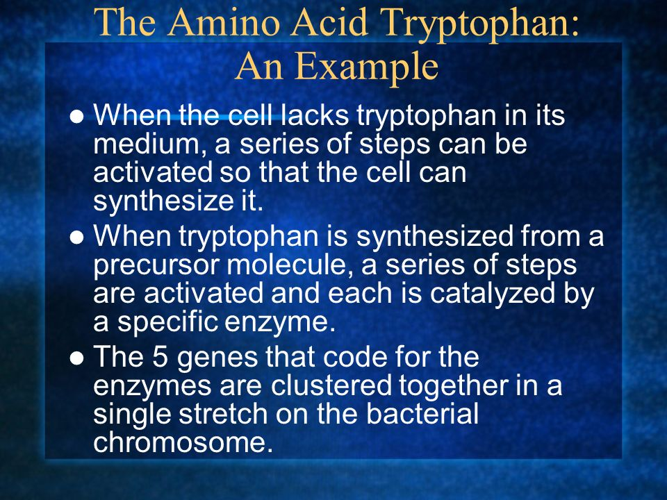 The Amino Acid Tryptophan: An Example When the cell lacks tryptophan in its medium, a series of steps can be activated so that the cell can synthesize