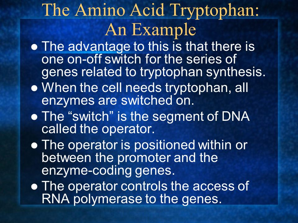 The Amino Acid Tryptophan: An Example The advantage to this is that there is one on-off switch for the series of genes related to tryptophan synthesis