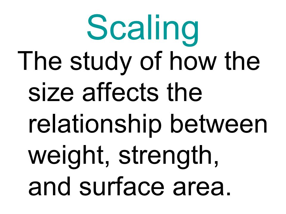 Scaling The study of how the size affects the relationship between weight, strength, and surface area.