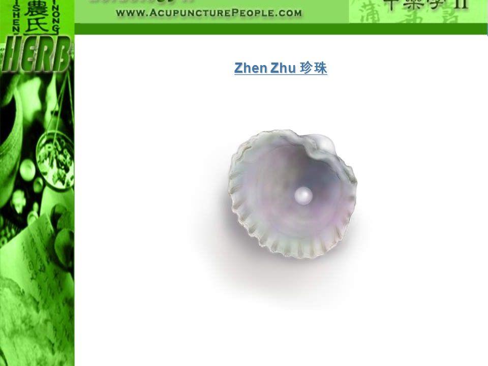 Zhen Zhu Zhen Zhu