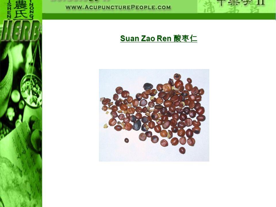 Suan Zao Ren Suan Zao Ren