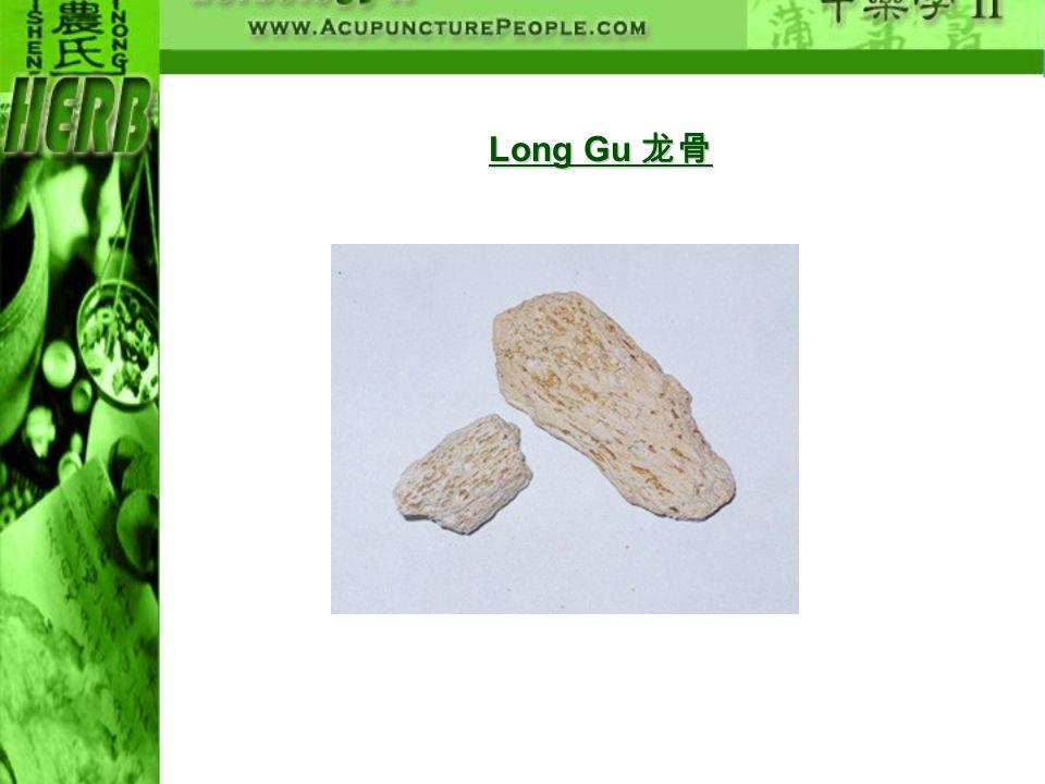 Long Gu Long Gu