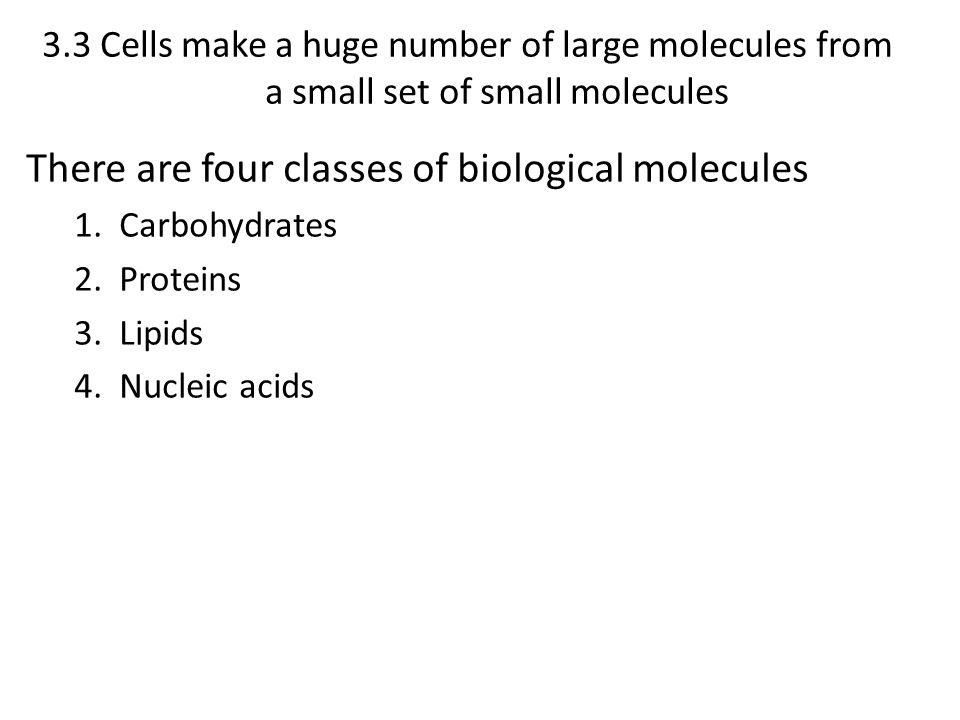 3.3 Cells make a huge number of large molecules from a small set of small molecules There are four classes of biological molecules 1. Carbohydrates 2.