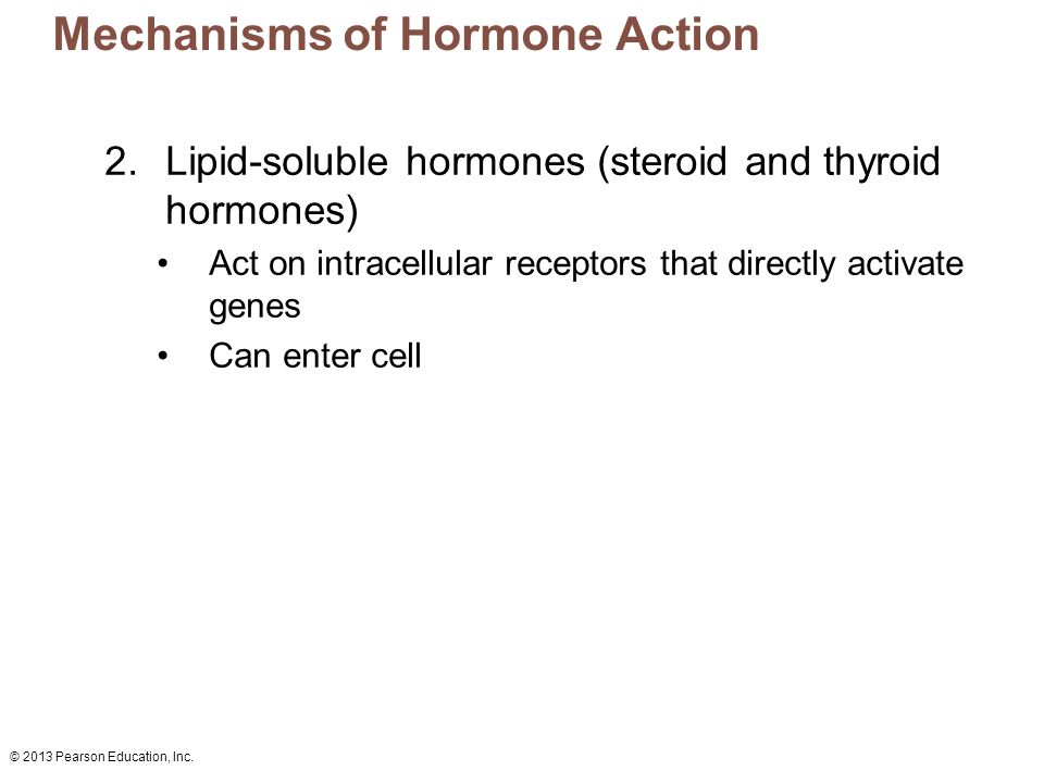 © 2013 Pearson Education, Inc. Mechanisms of Hormone Action 2.Lipid-soluble hormones (steroid and thyroid hormones) Act on intracellular receptors tha