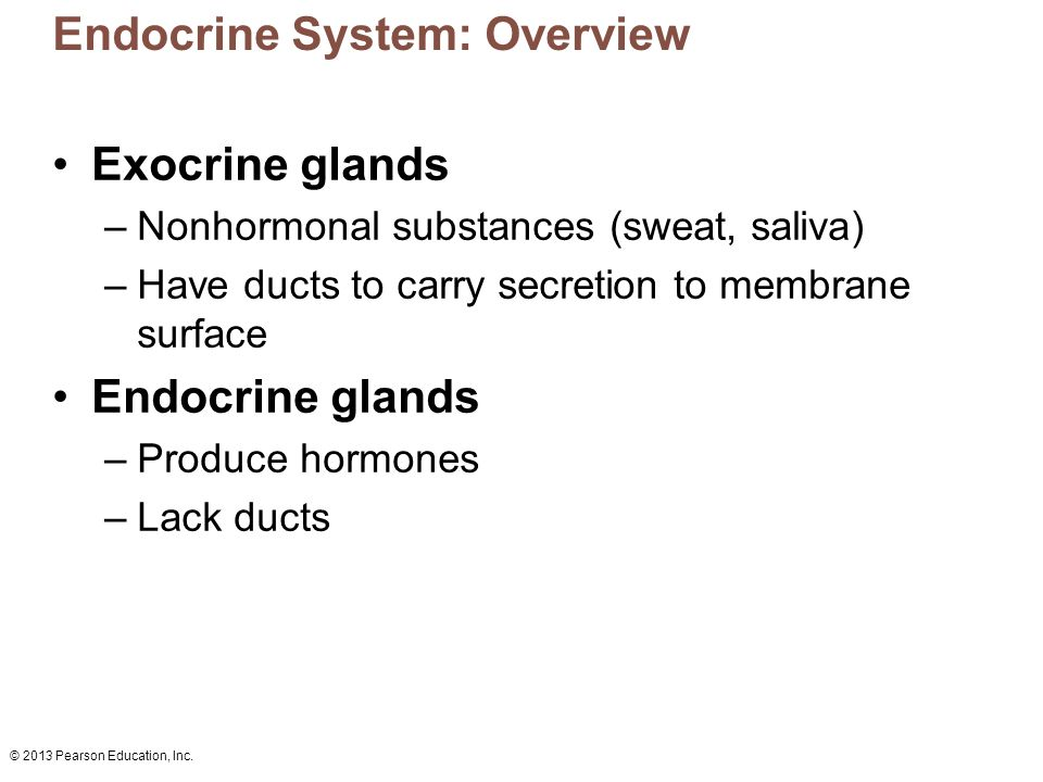 © 2013 Pearson Education, Inc. Endocrine System: Overview Exocrine glands –Nonhormonal substances (sweat, saliva) –Have ducts to carry secretion to me