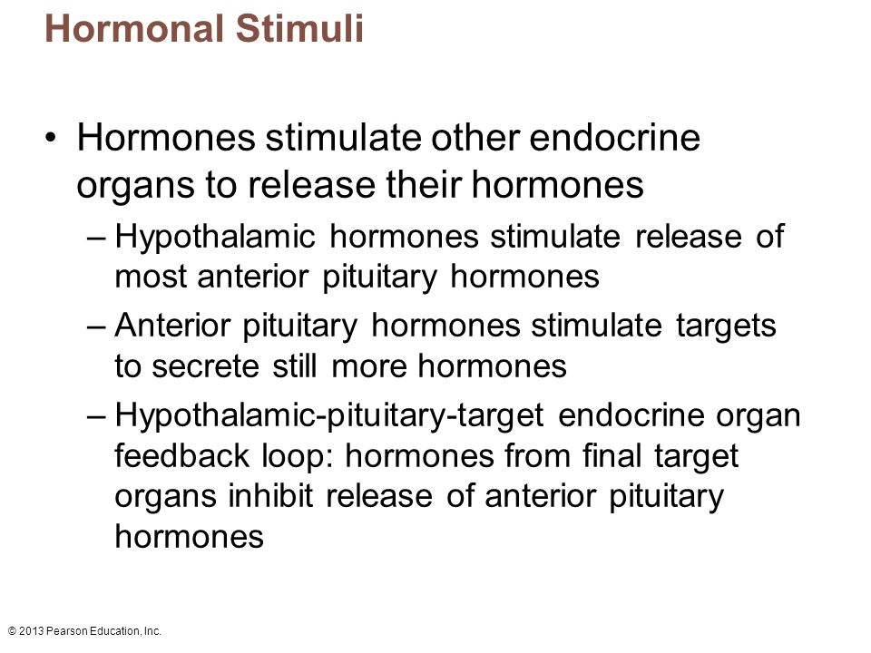 © 2013 Pearson Education, Inc. Hormonal Stimuli Hormones stimulate other endocrine organs to release their hormones –Hypothalamic hormones stimulate r